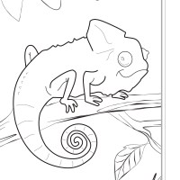 Brazil Coloring Pages at GetColorings.com   Free printable ...