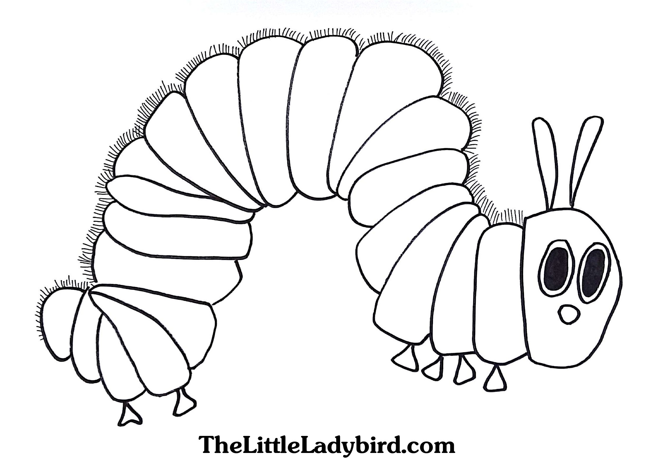 Butterfly Cocoon Coloring Pages At Getcolorings