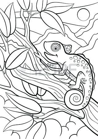 Animal Camouflage Coloring Page Sketch Coloring Page