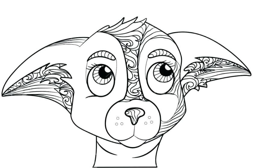 chihuahua puppy coloring pages at getcolorings  free