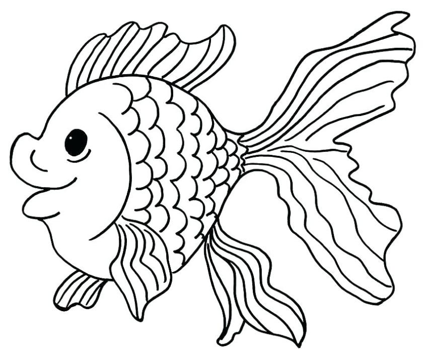 clown fish coloring page at getcolorings  free