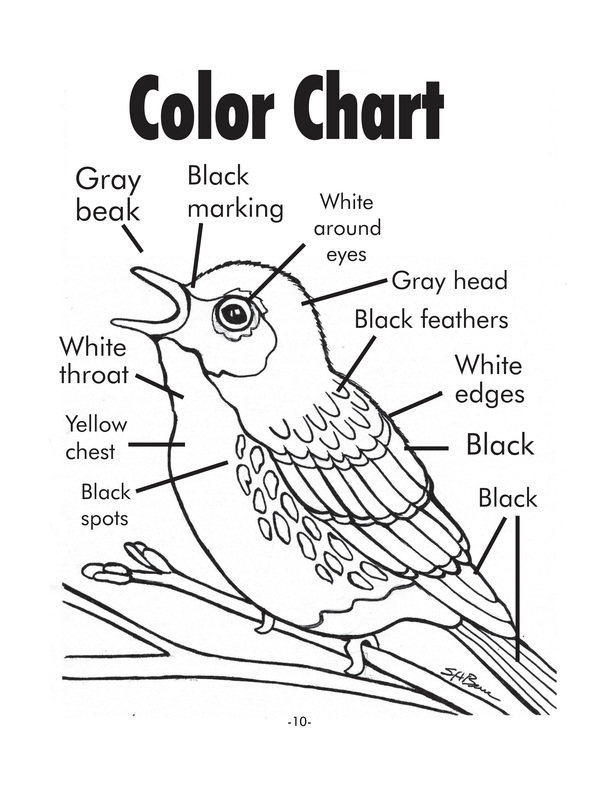 Coloring Pages With Instructions at GetColorings.com