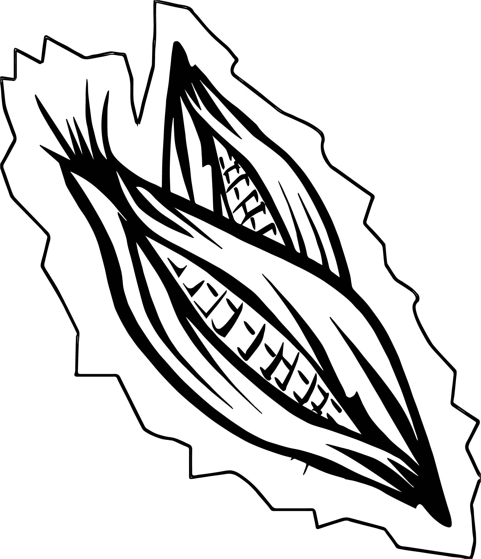 Ear Of Corn Coloring Page At Getcolorings