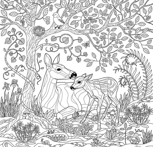 forest coloring page # 63