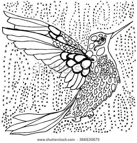 Free Printable Hummingbird Coloring Pages at GetColorings