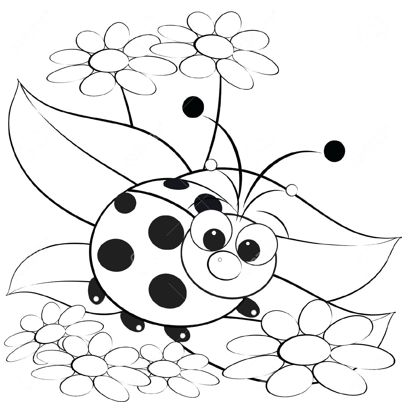Free Printable Ladybug Coloring Pages At Getcolorings