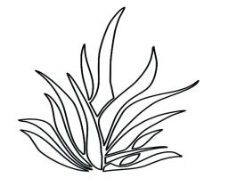 Grass Coloring Page at GetColorings.com   Free printable ...