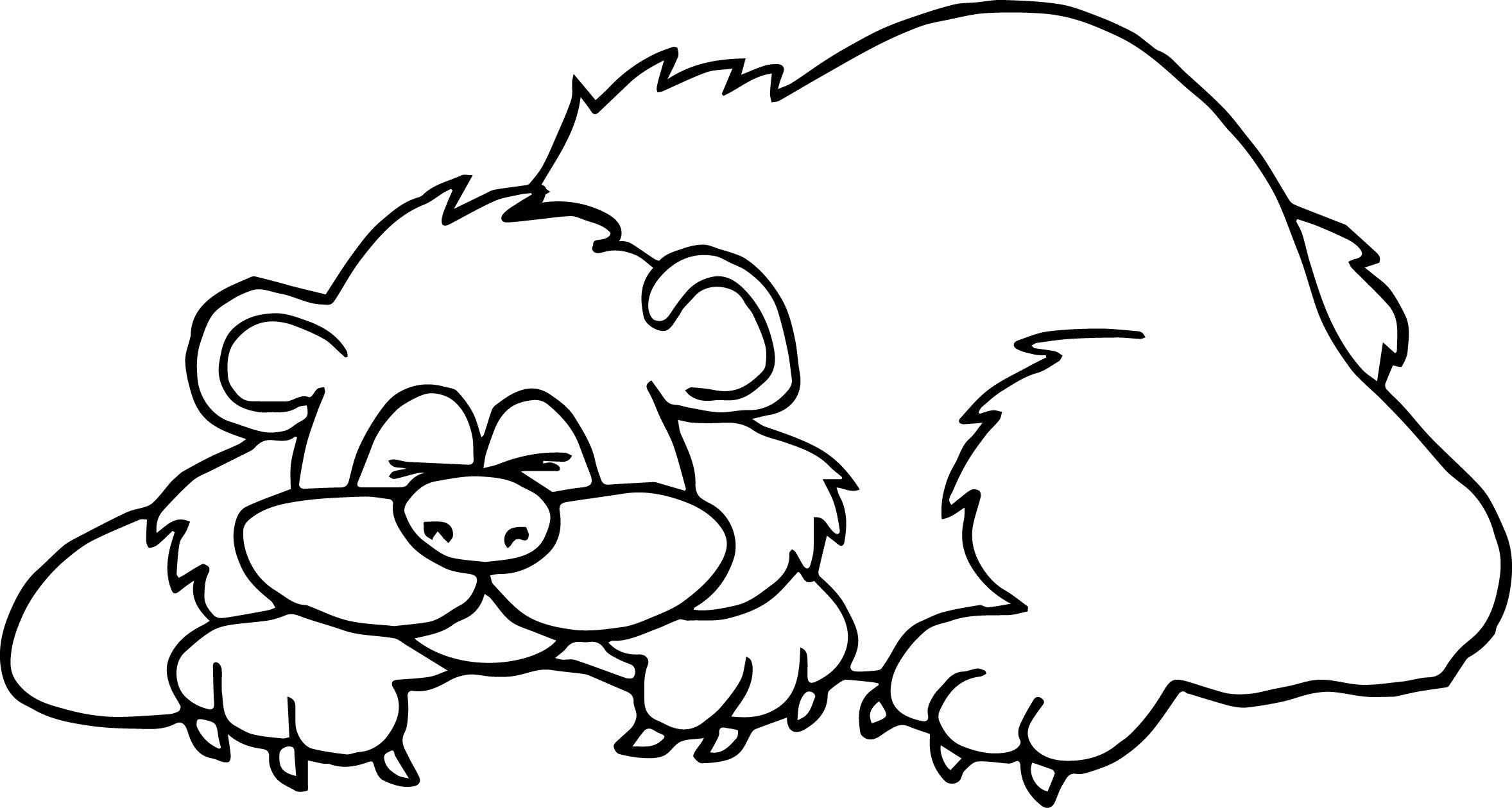 Hibernating Animals Coloring Pages At Getcolorings