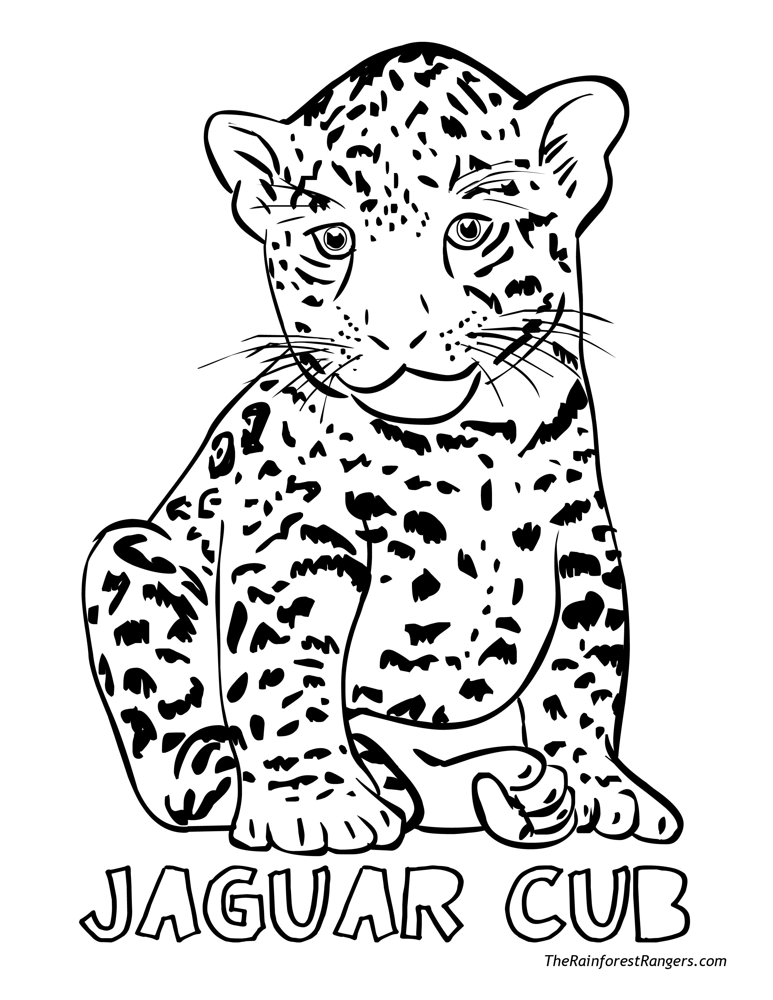 Jacksonville Jaguars Coloring Pages At Getcolorings