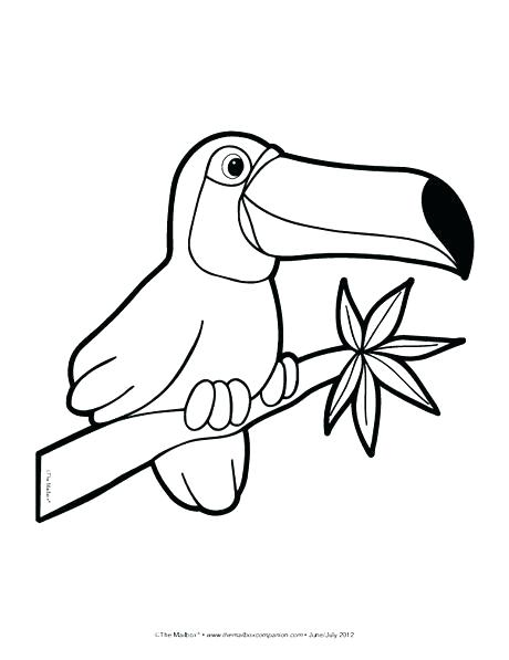 Jungle Coloring Pages For Preschoolers at GetColorings.com