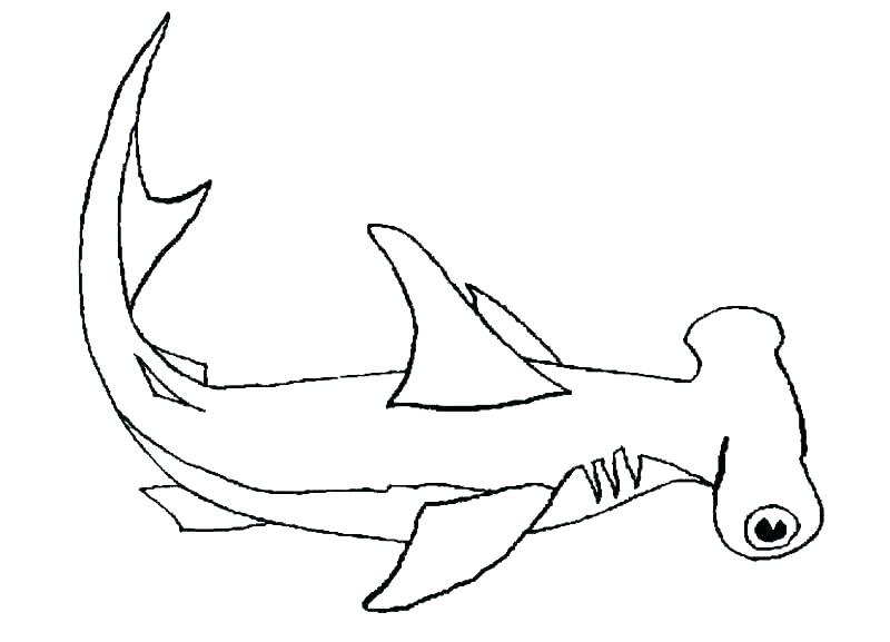 lemon shark coloring page at getcolorings  free