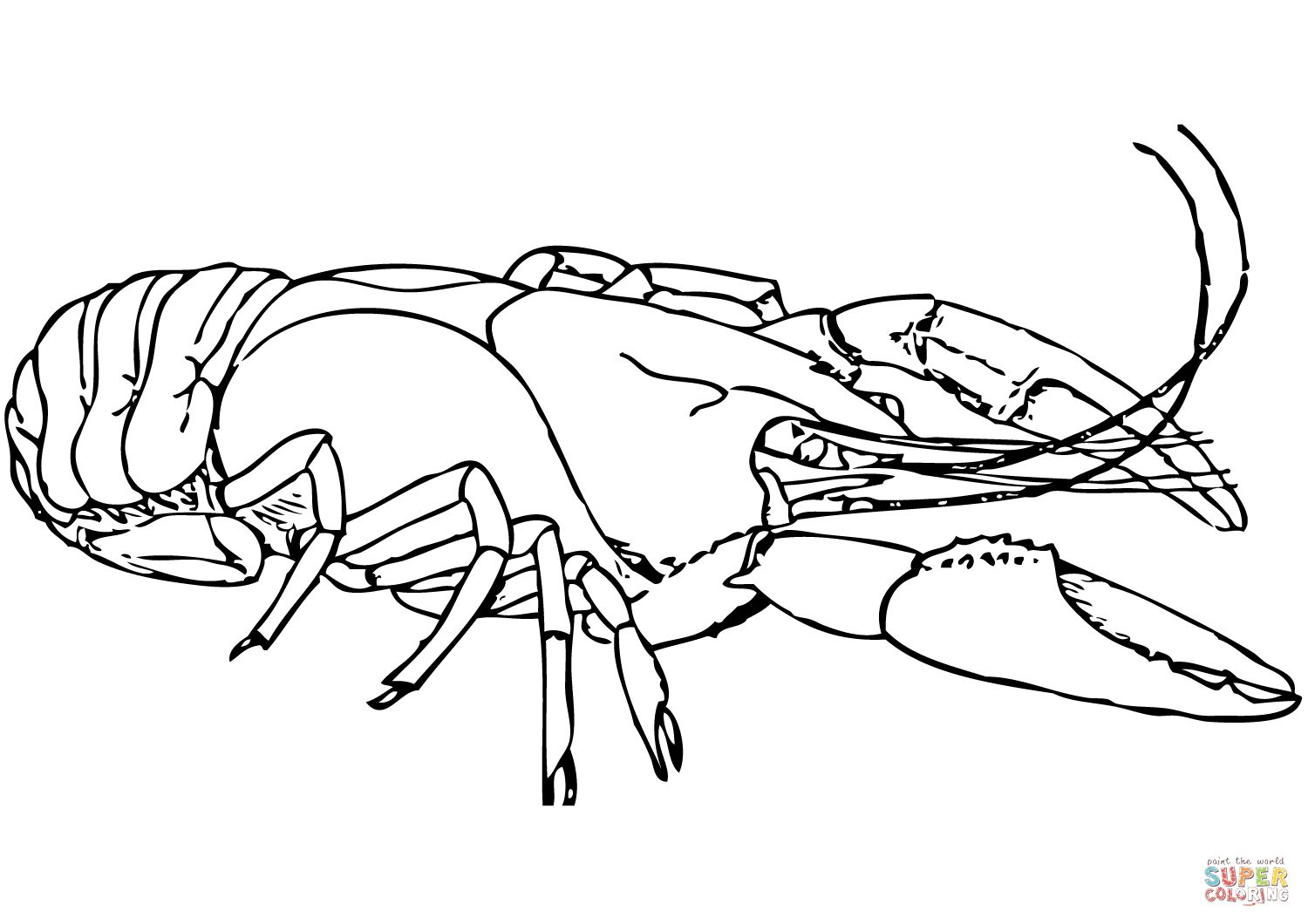 Lobster Coloring Page At Getcolorings
