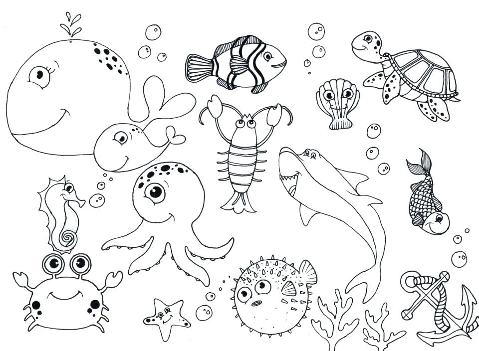 Ocean Animals Coloring Pages For Preschool at GetColorings
