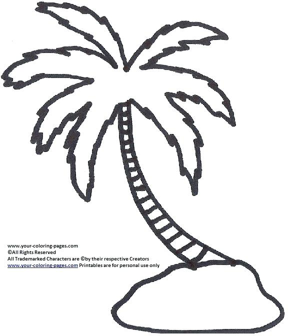 palm tree leaves coloring pages at getcolorings  free