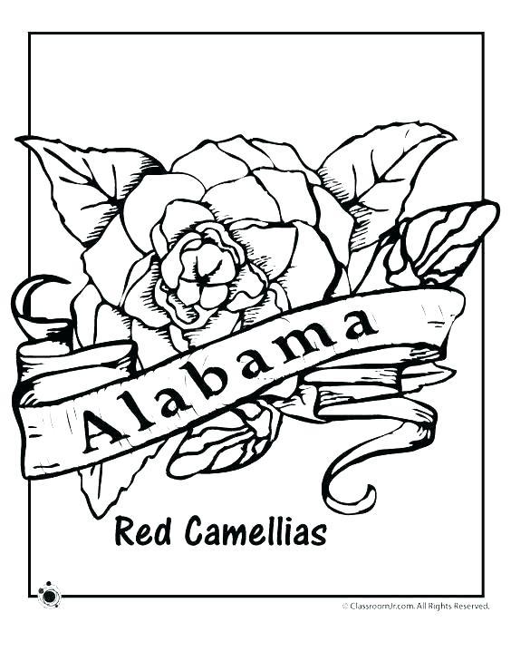 Pennsylvania Dutch Hex Signs Coloring Pages at