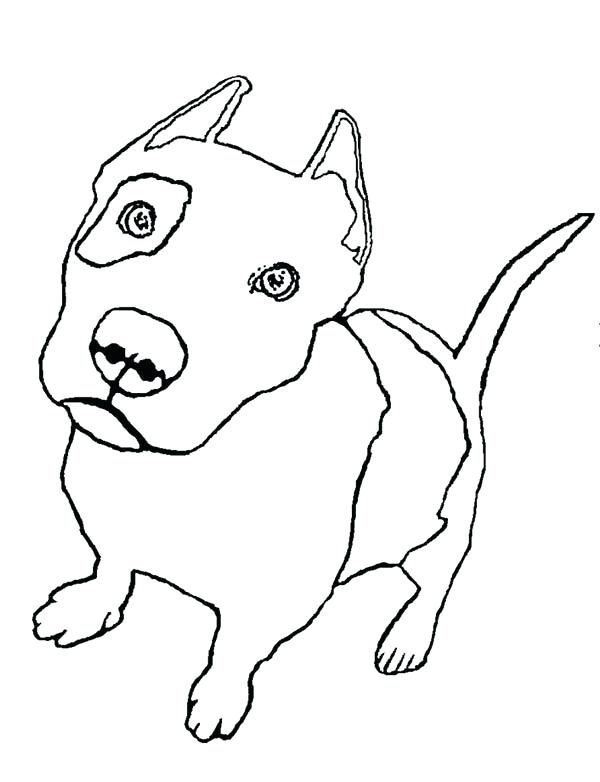 Realistic Pitbull Coloring Pages at GetColorings.com
