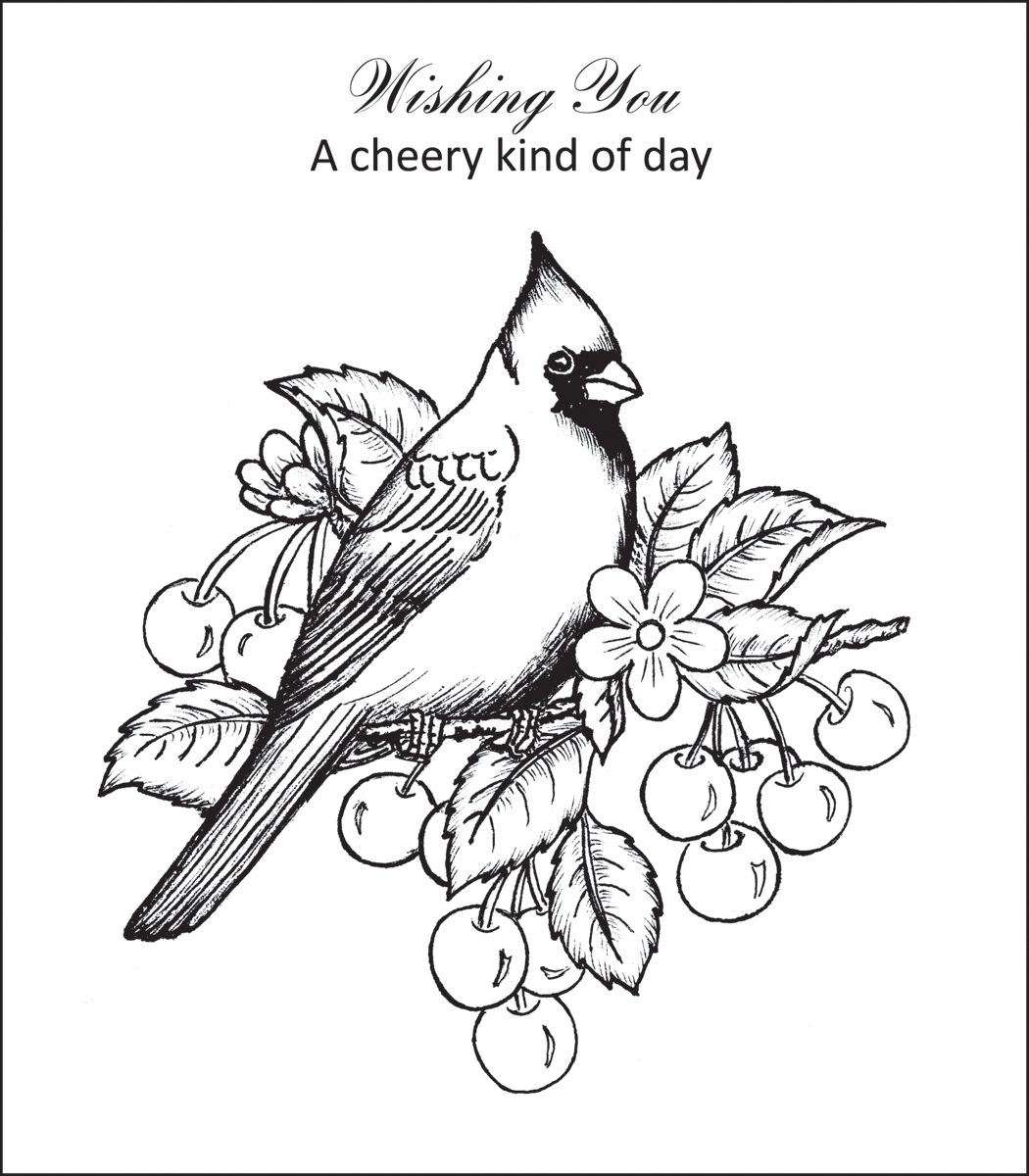 Red Cardinal Coloring Page At Getcolorings