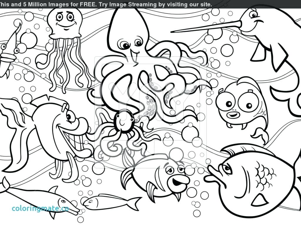 Crazy Color Creatures Pages Coloring Pages