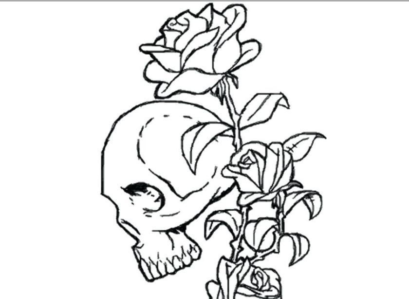skull and roses coloring pages at getcolorings  free