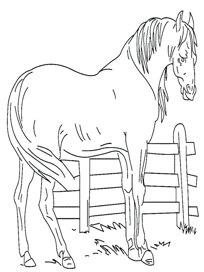 Spirit Riding Free Coloring Pages at GetColorings.com