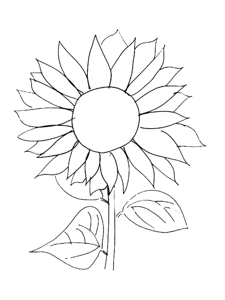 Van Gogh Sunflowers Coloring Page at GetColorings.com