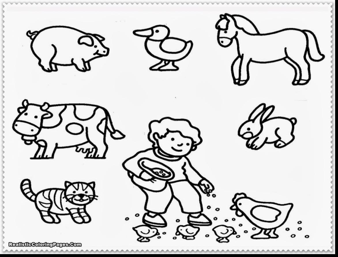 Zoo Coloring Pages For Preschoolers at GetColorings.com