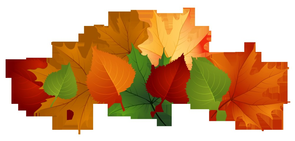 medium resolution of 4153x1988 new leaves clipart design