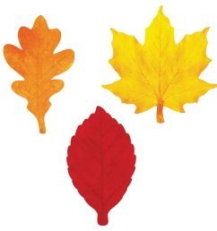 1600x1600 leaves clip art free images download [ 1600 x 1600 Pixel ]