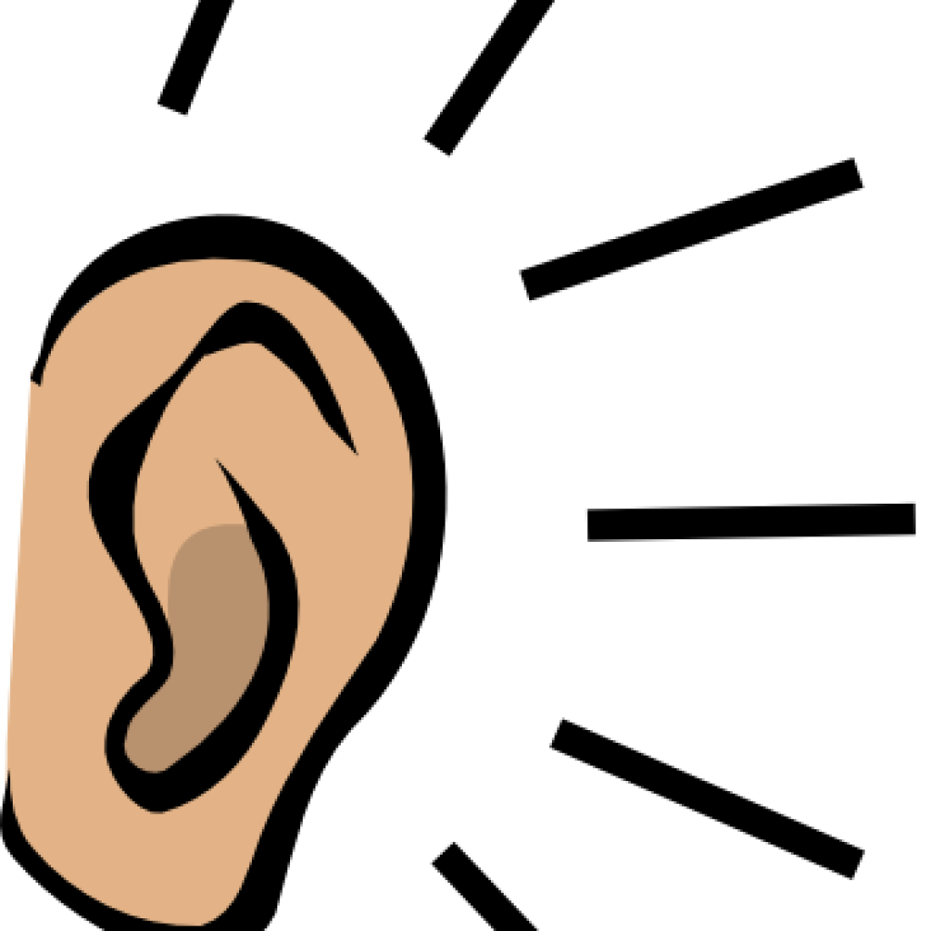 Clipart Ear At Getdrawings
