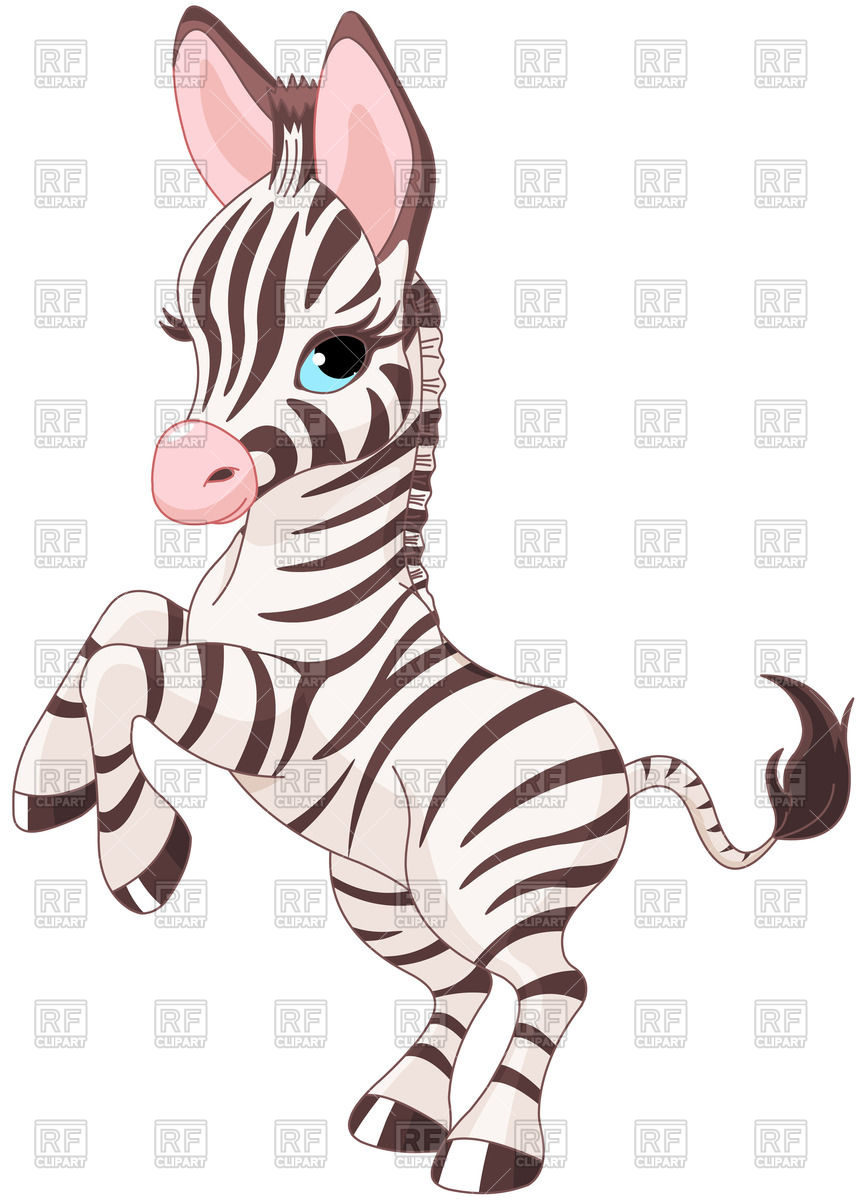 hight resolution of 867x1200 very cute baby zebra prancing royalty free vector clip art image