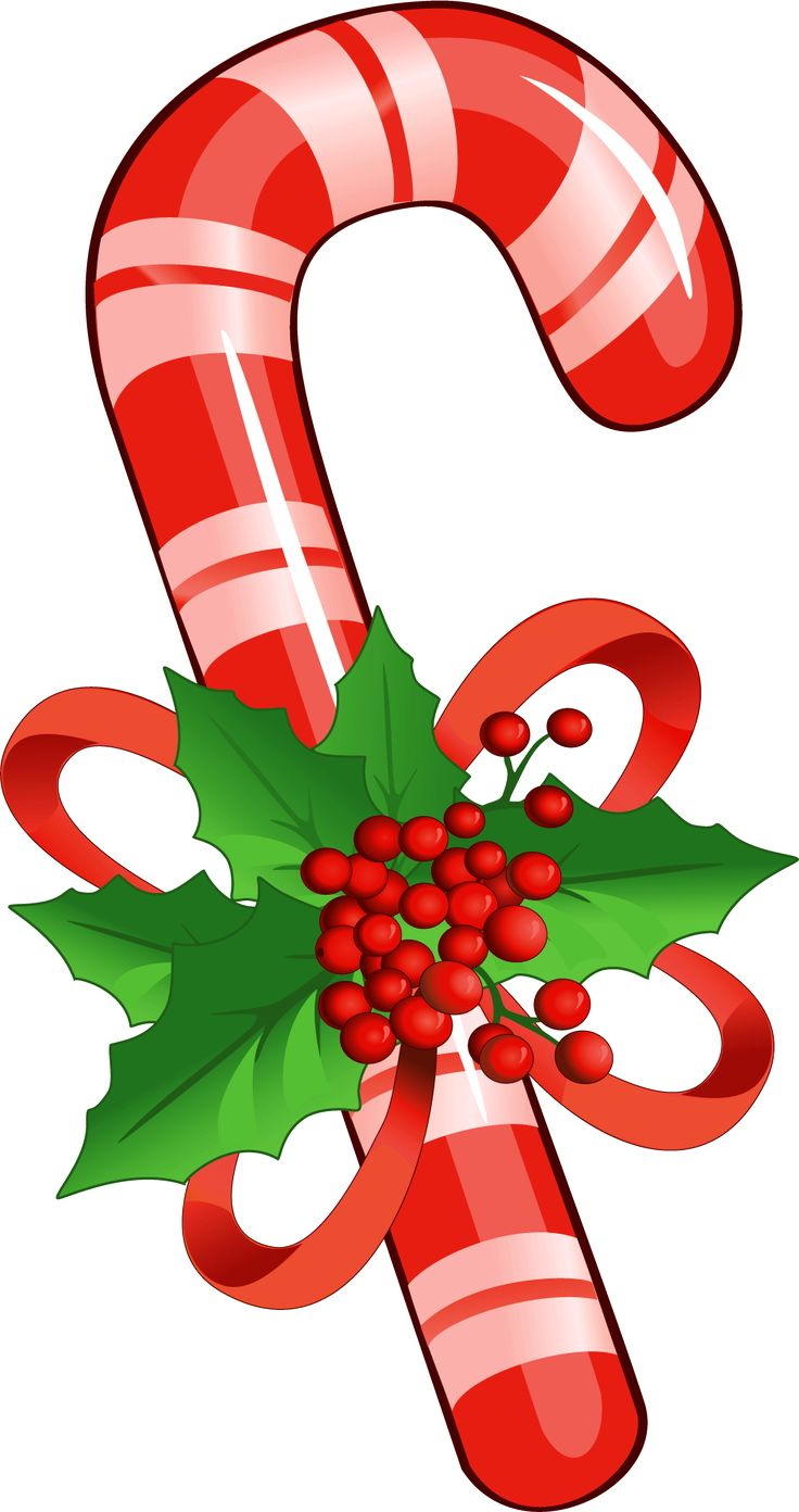 hight resolution of 736x1392 candy cane dog bone clipart