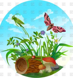 1200x1200 nature icon insect life in forest royalty free vector clip art [ 1200 x 1200 Pixel ]