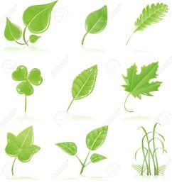 green grass clipart [ 1300 x 1300 Pixel ]