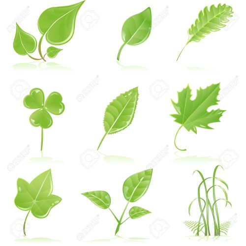 small resolution of green grass clipart