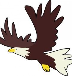 1920x1800 bald eagle clipart harley davidson [ 1920 x 1800 Pixel ]