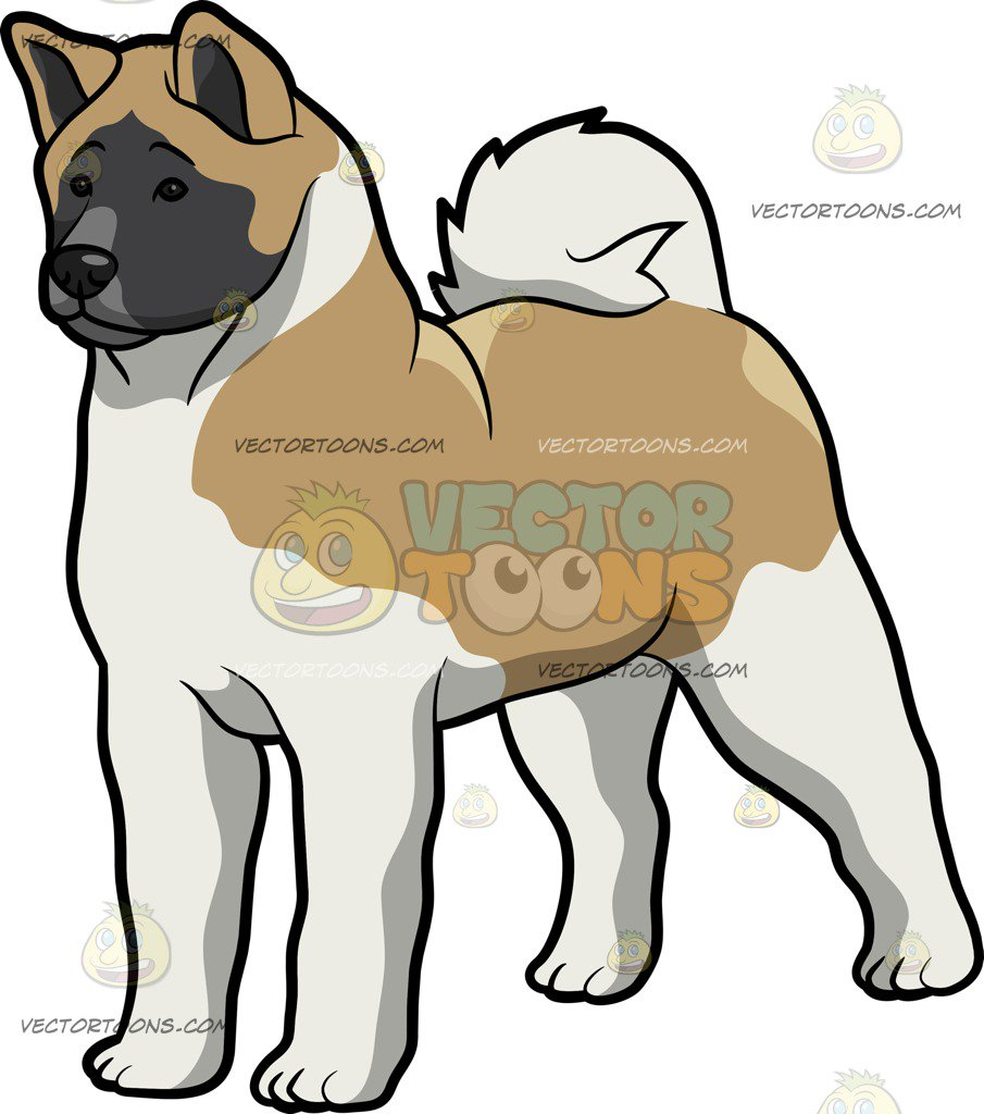 hight resolution of 905x1024 akita dog clipart