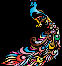 2060x2400 black peacock cliparts free download clip art free [ 2060 x 2400 Pixel ]