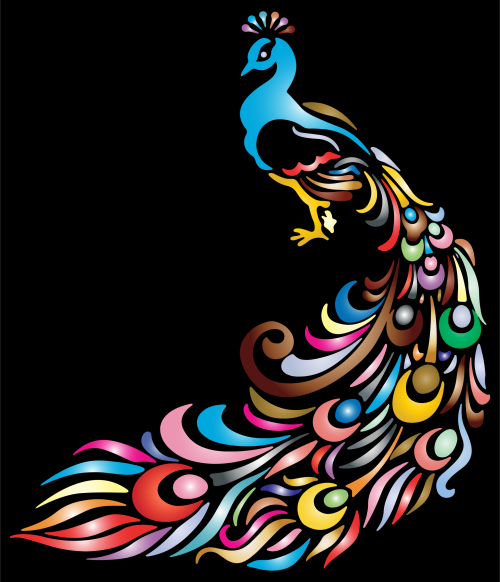 small resolution of 2060x2400 black peacock cliparts free download clip art free
