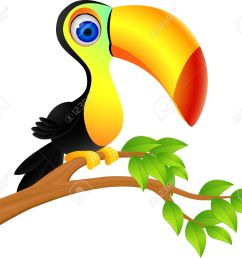 1300x1129 clipart jungle birds cute rainforest cliparts free download clip [ 1300 x 1129 Pixel ]
