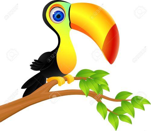 small resolution of 1300x1129 clipart jungle birds cute rainforest cliparts free download clip