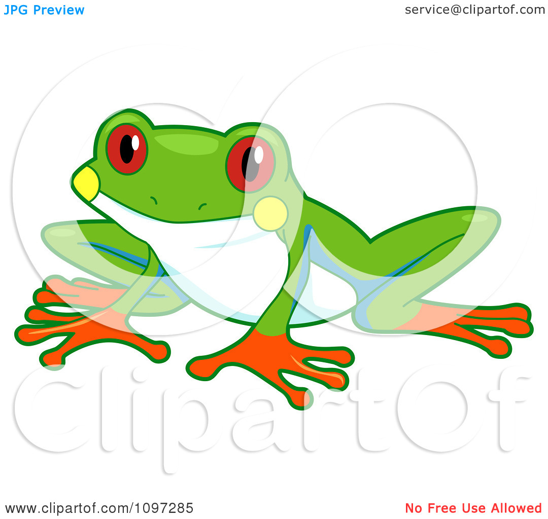 hight resolution of 1080x1024 red eyed tree frog drawing red eyed tree frog clipart clipart