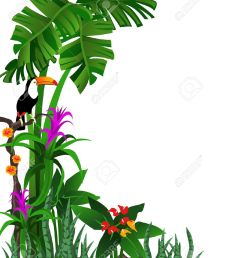 1067x1300 tropical forest clipart explore pictures [ 1067 x 1300 Pixel ]