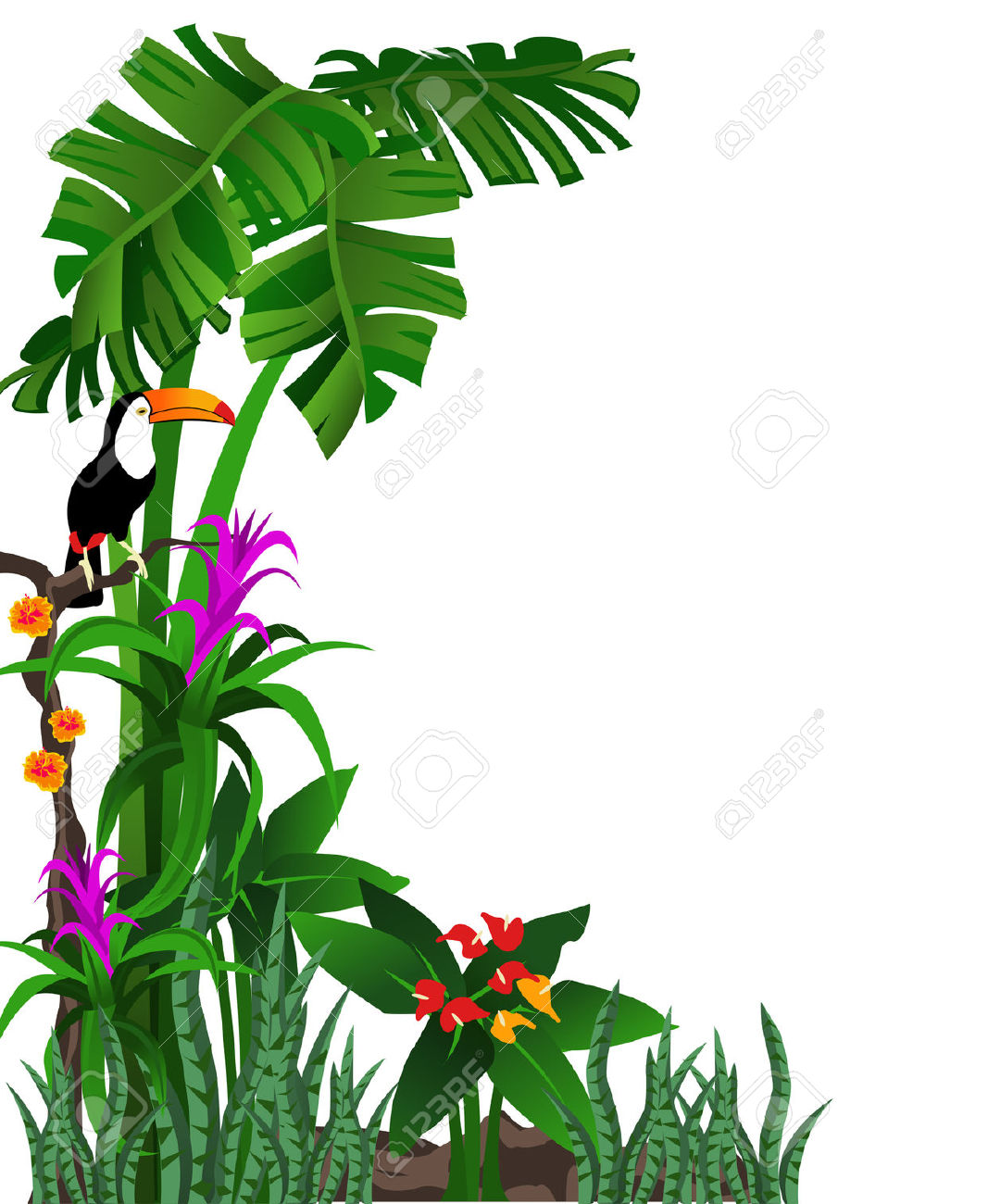 hight resolution of 1067x1300 tropical forest clipart explore pictures