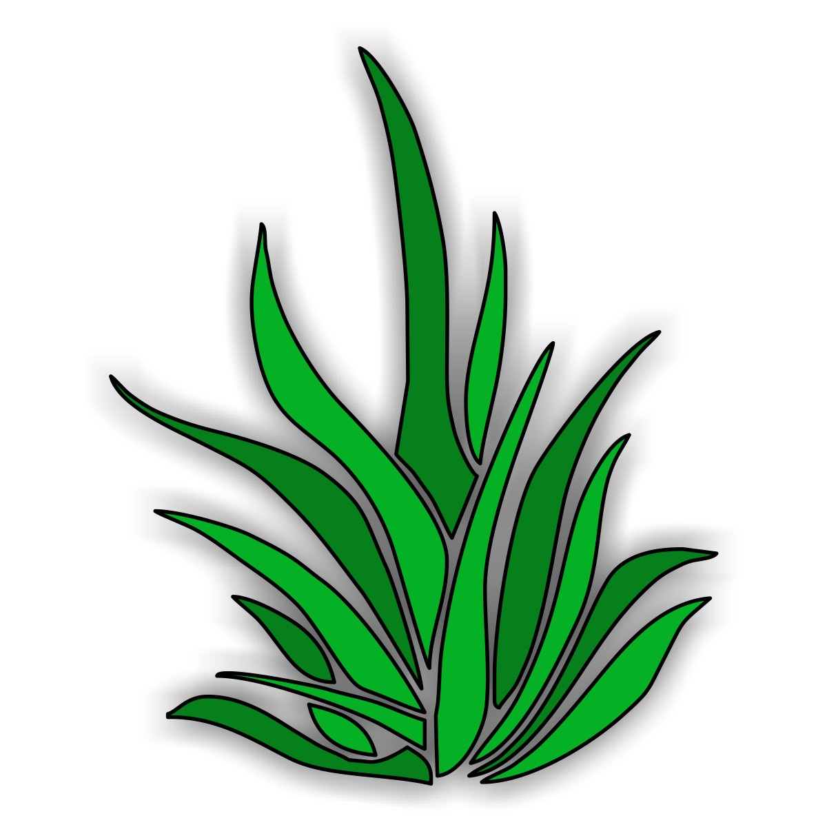 hight resolution of 1200x1200 collection of ocean plants clipart high quality free