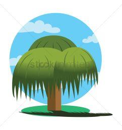 1300x1300 weeping willow tree vector image [ 1300 x 1300 Pixel ]