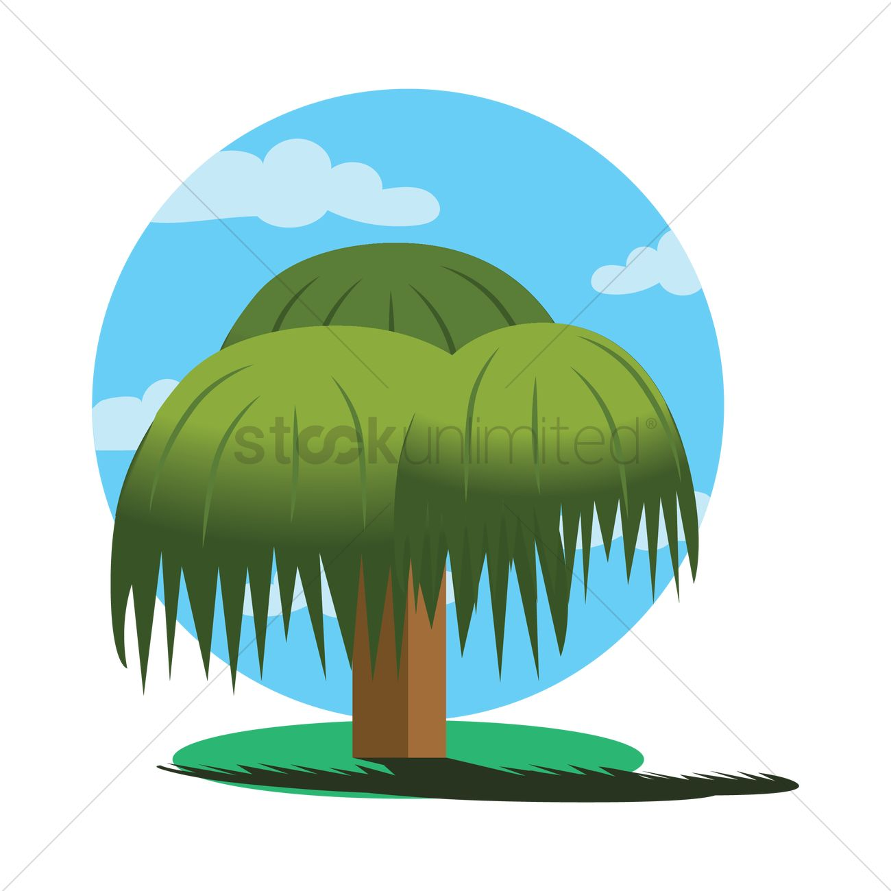 hight resolution of 1300x1300 weeping willow tree vector image