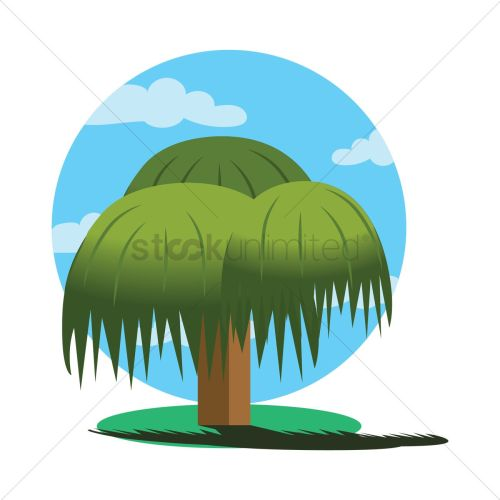 small resolution of 1300x1300 weeping willow tree vector image