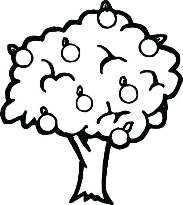 apple tree coloring pages # 65