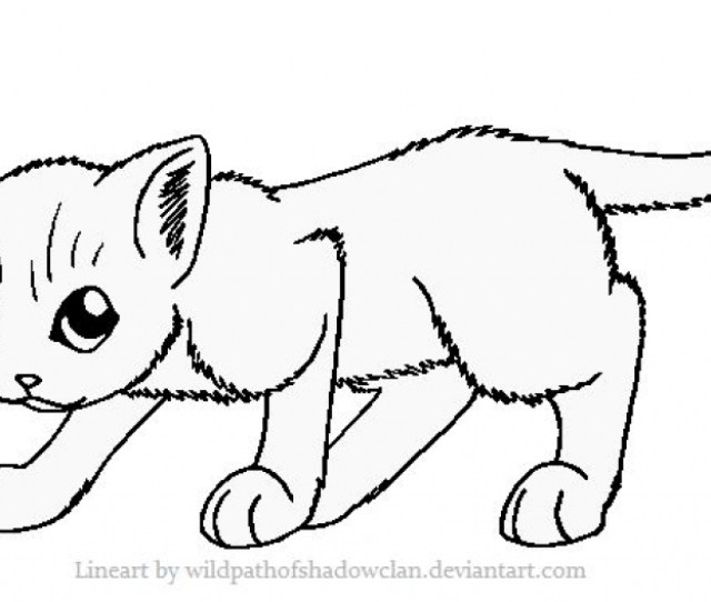 Cat Picture Coloring Page At Getdrawings Free Download