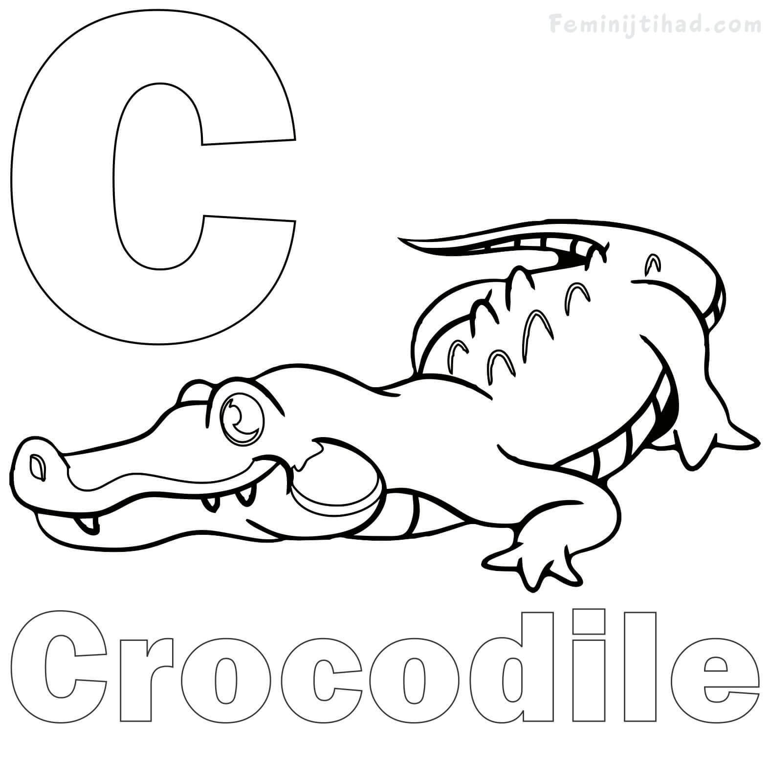 Crocodile Coloring Pages For Kids At Getdrawings
